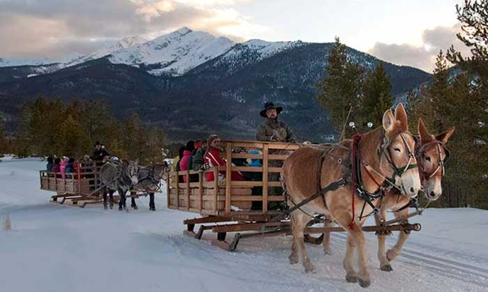 At your breck and call Winter Sleigh Rides